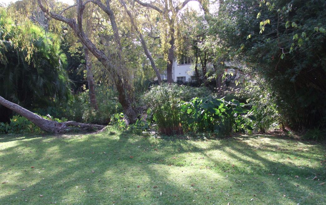Ardene Gardens